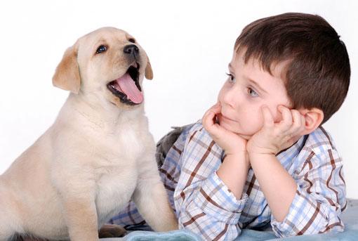 щенок и ребенок
